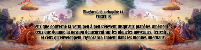14.18
