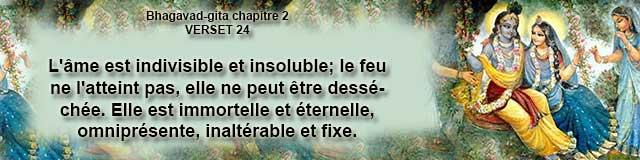bg.2.24 (8)