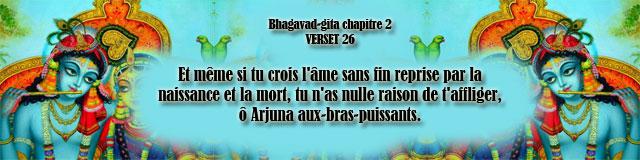 bg.2.26 (49)