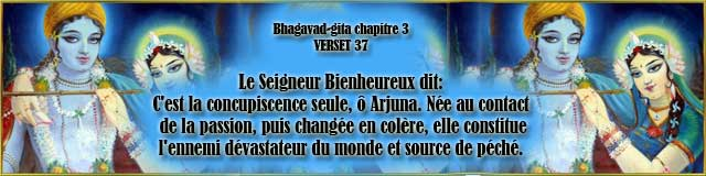 bg.3.37(91)