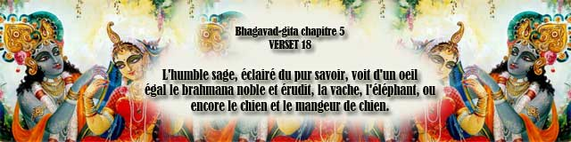 bg.5,18(154)