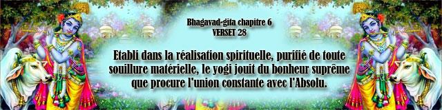 bg.6,28(187)