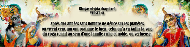 bg.6,41(199)