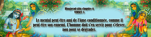 bg.6,5(169)