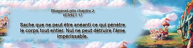 bg.2.17 (2)