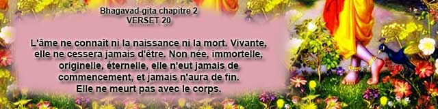 bg.2.20 (4)