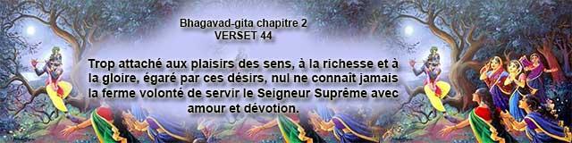 bg.2.44 (20)