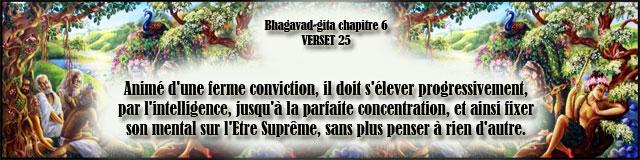bg.6,25(184)